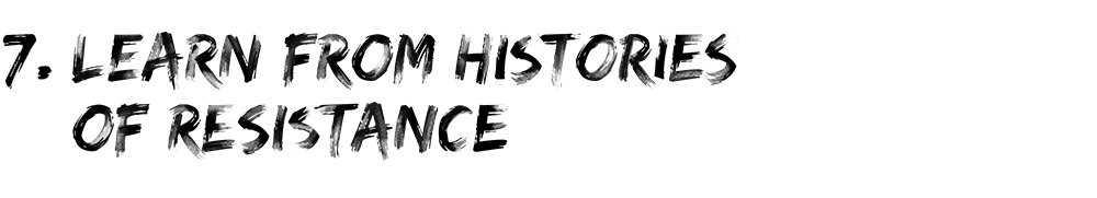 Learn from histories of resistance.