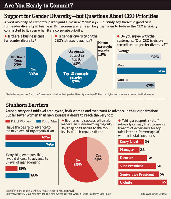 Wall Street Journal Graphic illustrating the differences between the CEOs who say they prioritize gender equality and their actions